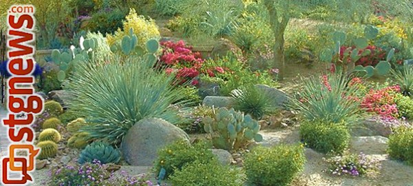 water-wise gardening workshop;