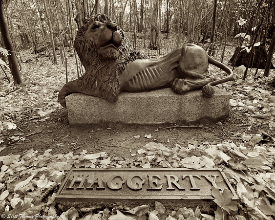 The Haggerty Lion which sits on a hard to see hill across from the Chapel surrounded by woods.