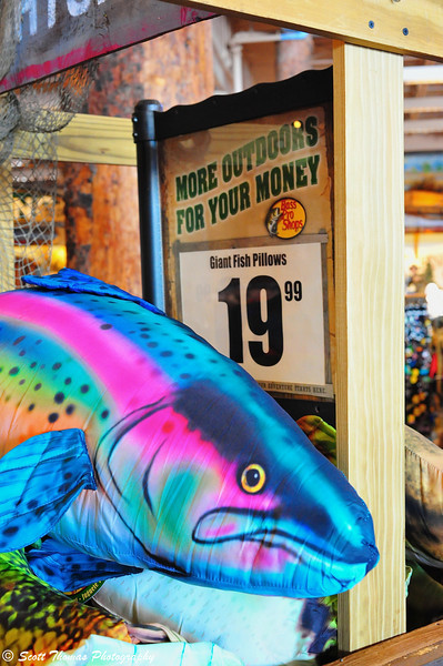 Giant Fish Pillows for only $19.99 for sale in the Bass Pro Shops of the Finger Lakes at the Finger Lakes Mall in Auburn, New York.