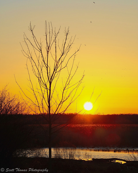 Sun setting over the Montezuma National Wildlife Refuge near Seneca Falls, New York.
