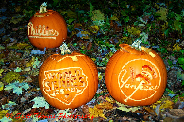 Major League Baseball's 2009 World Series teams depicted in pumpkins at the Enchanted Beaver Lake event in the Beaver Lake Nature Center near Baldwinsville, New York.