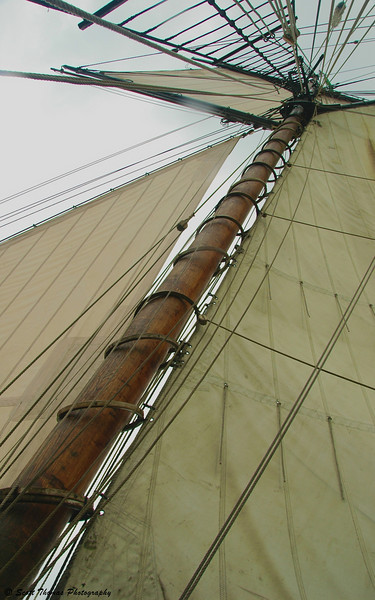 Its sails and rigging set by the crew and guests, the Lynx moves under wind power like its historic predecessors.