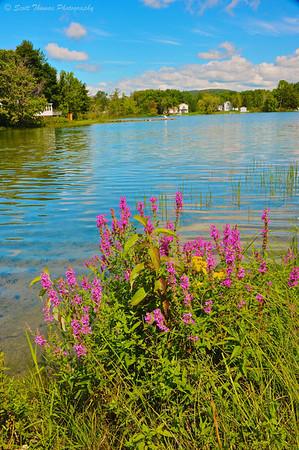 Little York Lake at Dwyer Memorial Park in Little York, New York.