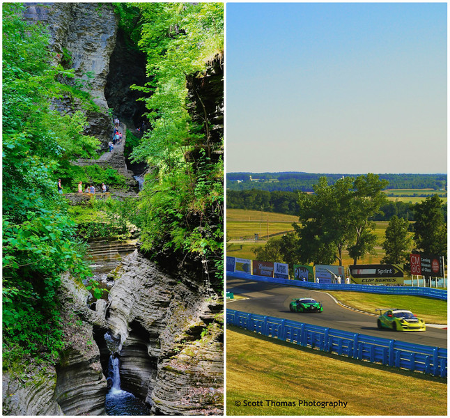 Watkins Glen State Park and Watkins Glen International lie within five miles of each other in the Finger Lakes region of New York.