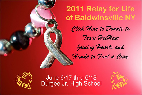 Click Here to Donate to Scott's Relay for Life team.  Thank you!