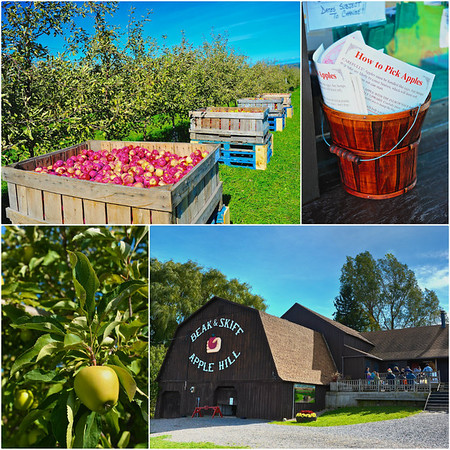 Beak & Skiff Apple Farm near LaFayette, New York.