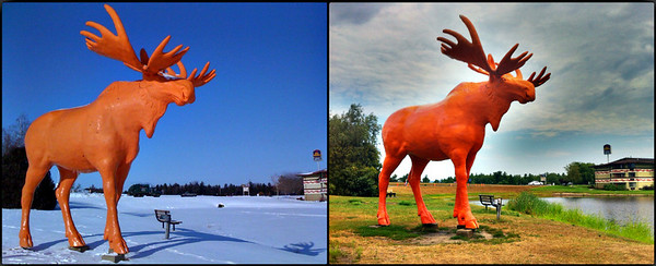 Orange Moose roadside attraction off of Interstate Highway 94 at the Black River Falls, Wisconsin exit 116. January, 2010 on the left, July 2012 on the right.  Both photos taken with an Apple iPhone using the Pro HDR app.