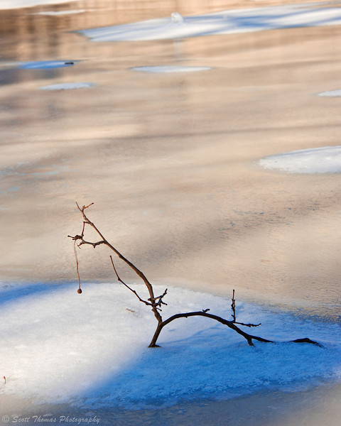 Light and shadow play over snow, ice and a branch frozen in Falls Creek near Ithaca Falls.