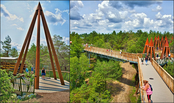 Views of the Wild Walk at The Wild Center in Tupper Lake, New York which opened over the 2015 July 4th holiday weekend.