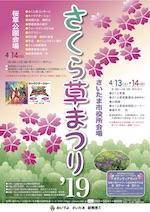 Japanese primrose sakurasou festival