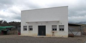 El-Hogar-de-Asis-e1514658999168