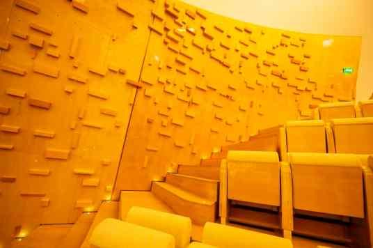Murs de l'auditorium - Philharmonie de Paris