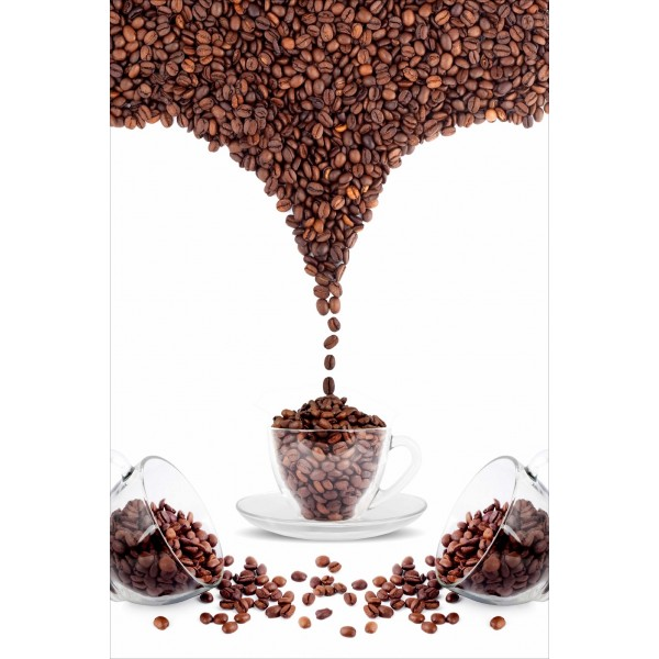 Sticker Frigidaire dco saveur grain de caf
