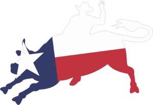 Die Cut Texas Flag Bull Rider Sticker