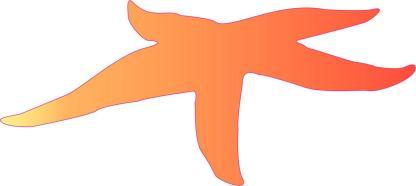 Orange Starfish Stickers