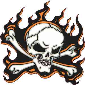orange flame skull bumper sticker