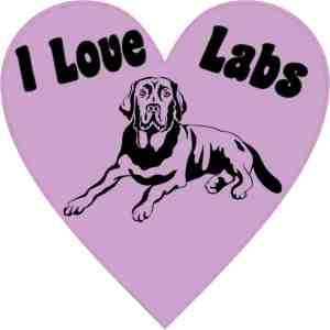 Heart I Love Labs bumper sticker