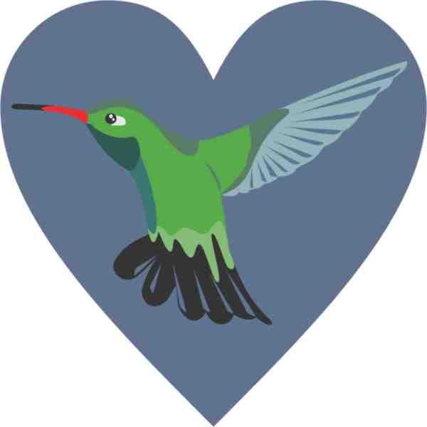 Hummingbird Heart bumper sticker