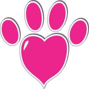 Pink Heart Paw Print Bumper Sticker