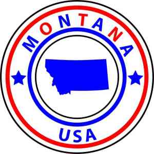 state circle sticker
