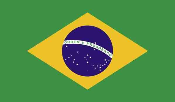 Inside Adhesive Brazil Flag Sticker