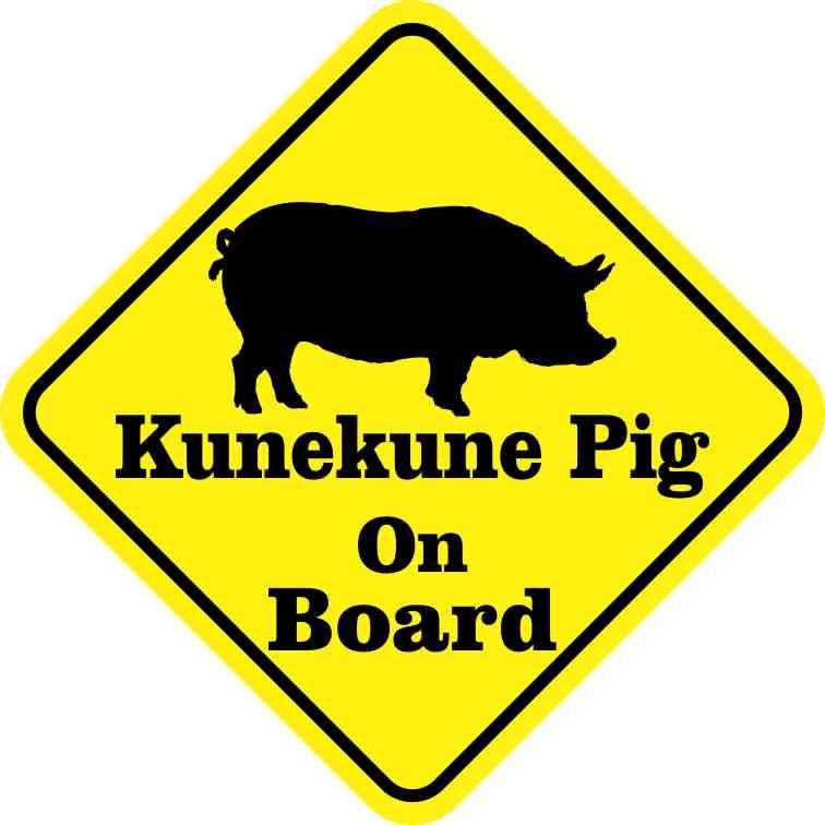 Kunekune Pig On Board Magnet