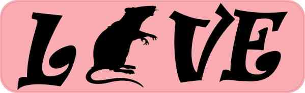 Love Rat Magnet