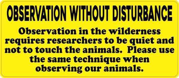 Observation Without Disturbance Sticker