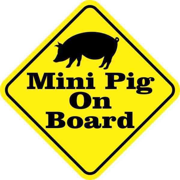 Mini Pig On Board Sticker