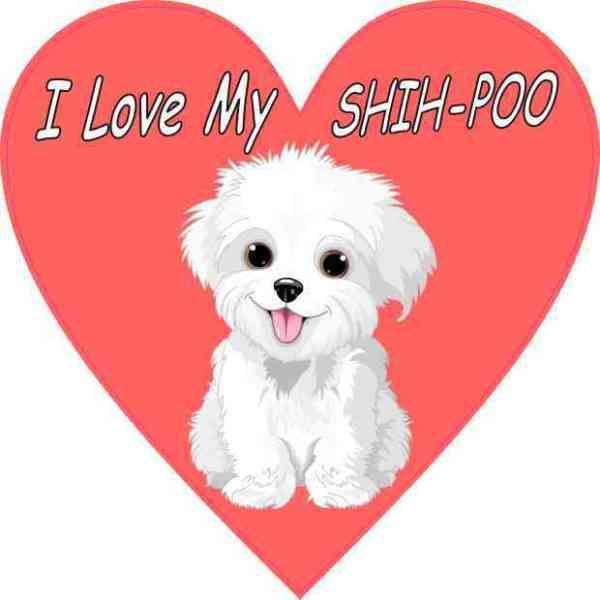 Heart I Love My Shih-Poo Sticker