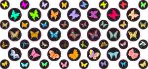 Butterfly Camera Dots®