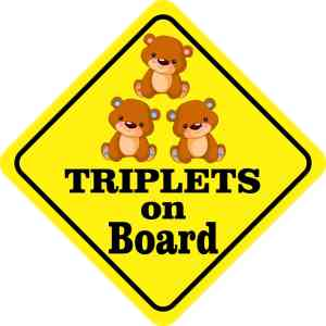 One Girl Two Boys Triplets on Board Magnet