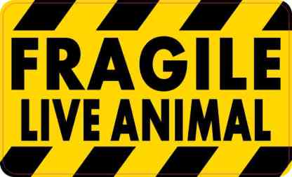 Fragile Live Animal Magnet