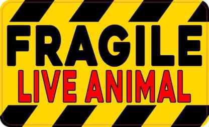 Red Fragile Live Animal Sticker
