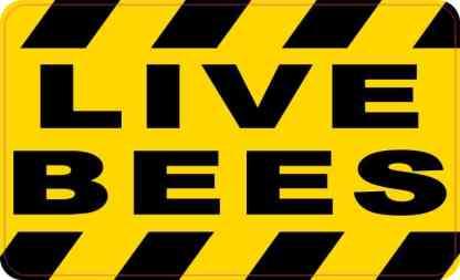 Live Bees Sticker