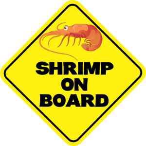 Shrimp on Board Magnet