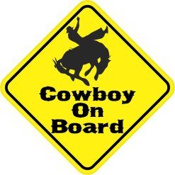 Silhouette Cowboy On Board Magnet
