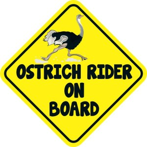 Ostrich Rider On Board Magnet
