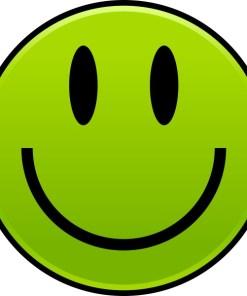Green Happy Face Sticker