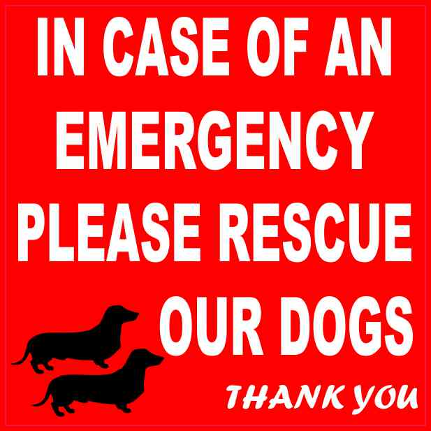 Dachshund Please Rescue Our Dogs Magnet