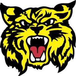 Yellow Wildcat Sticker