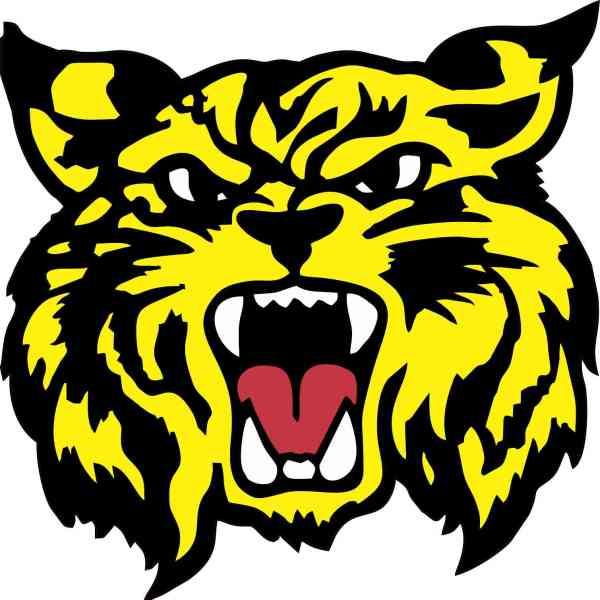 Yellow Wildcat Sticker