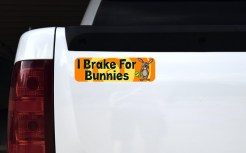 I Brake for Bunnies Magnet