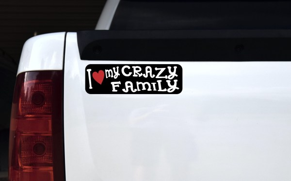 I Love My Crazy Family Bumper Sticker