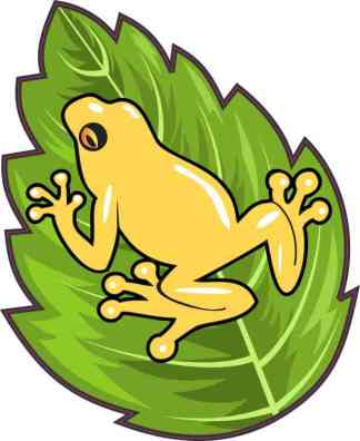 Golden Dart Frog Sticker