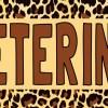 Zoo Veterinarian Bumper Sticker