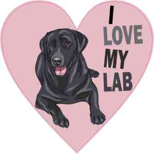 Pink Heart I Love My Lab Sticker