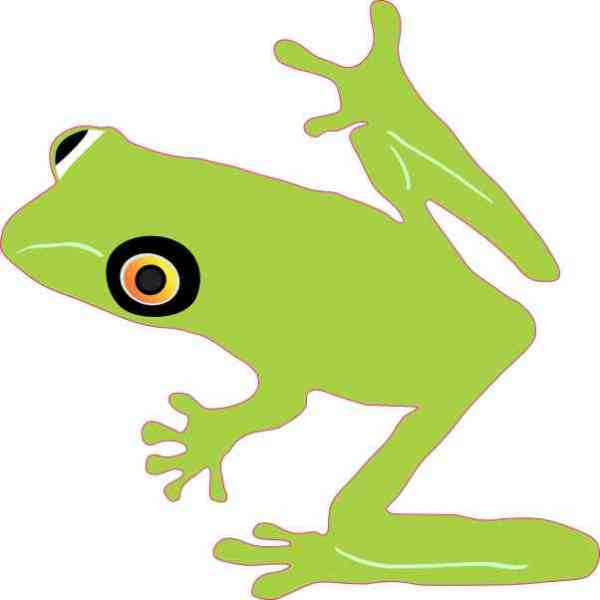 American Green Tree Frog Sticker
