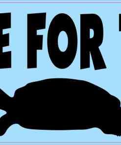 I Brake for Turtles Vinyl Sticker