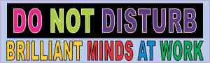 Brilliant Minds at Work Magnet